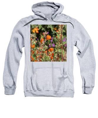 Sweatshirt featuring the photograph Desert Wildflowers by Judy Kennedy