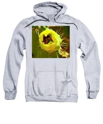 Flying Goldminer Sweatshirt by Judy Kennedy