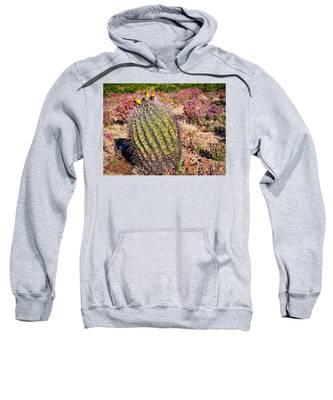 Fruit-bearing Barrel Cactus In Desert Rhubarb Sweatshirt by Judy Kennedy