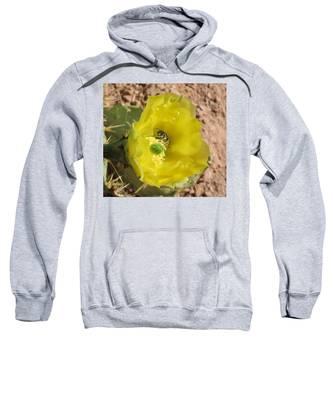 Leaf-cutter Bee Bathing In Gold Sweatshirt by Judy Kennedy