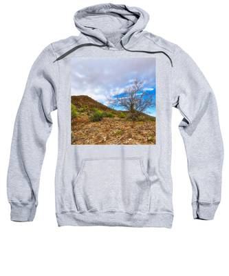 Sweatshirt featuring the photograph Lone Palo Verde by Judy Kennedy