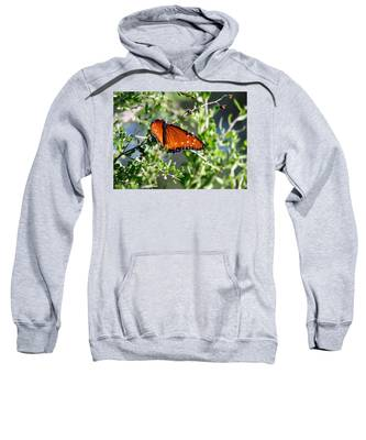 Queen On Creosote Sweatshirt by Judy Kennedy