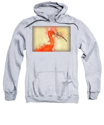 Scarlet Ibis Sweatshirt