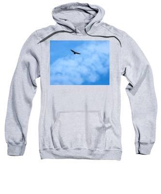 Sweatshirt featuring the photograph Turkey Vulture In Flight by Judy Kennedy
