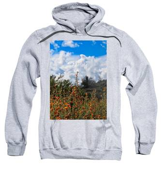 Sweatshirt featuring the photograph Under  A White Fluffy Cloud by Judy Kennedy