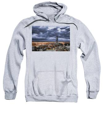 Warren In Infrared Sweatshirt