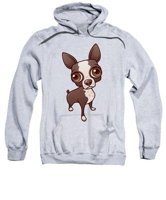 Massachusetts Hooded Sweatshirts T-Shirts