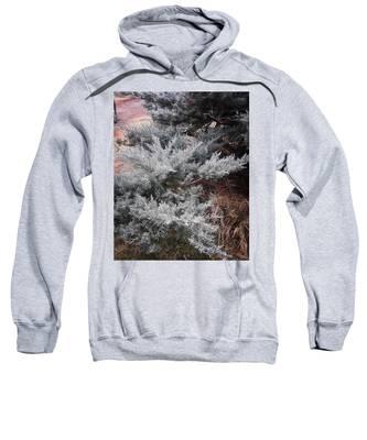 Frost Hooded Sweatshirts T-Shirts
