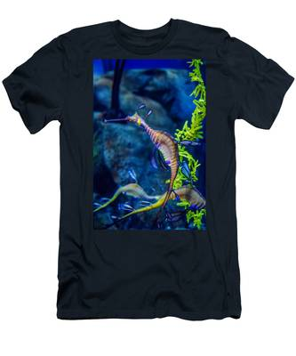 Weedy Seadragon Men's T-Shirt (Athletic Fit)