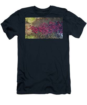 Spawning Kokanee Salmon Men's T-Shirt (Athletic Fit)