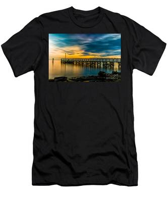 Birds On The Dock Men's T-Shirt (Athletic Fit)