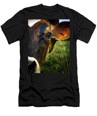 Cow Eating Grass Men's T-Shirt (Athletic Fit)