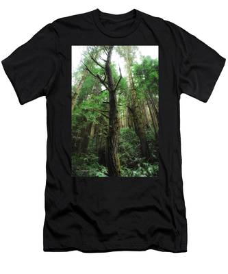 Groovin With The Redwoods Men's T-Shirt (Athletic Fit)