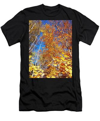 In The Forest At Fall Men's T-Shirt (Athletic Fit)