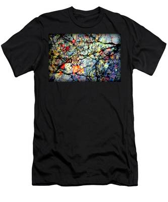 Natures Stained Glass Men's T-Shirt (Athletic Fit)