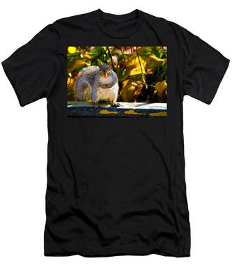 One Gray Squirrel Men's T-Shirt (Athletic Fit)