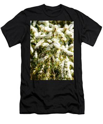 Snowy Pines Men's T-Shirt (Athletic Fit)