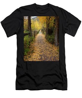 The Aspen Trail Men's T-Shirt (Athletic Fit)