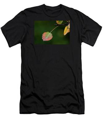 The Latter Rain  Men's T-Shirt (Athletic Fit)