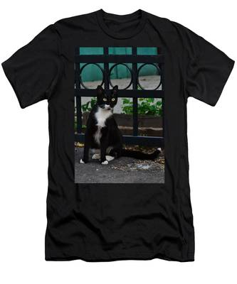 Men's T-Shirt (Athletic Fit) featuring the photograph Black Cat On Black Background by Michael Goyberg