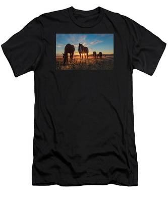 Sunset Band Men's T-Shirt (Athletic Fit)