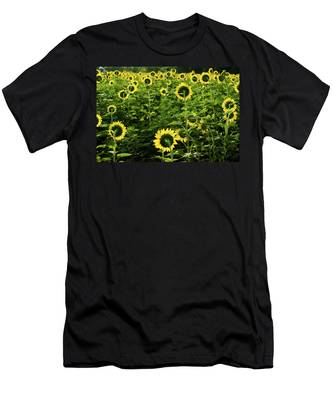 A Flock Of Blooming Sunflowers Men's T-Shirt (Athletic Fit) by Dennis Dame