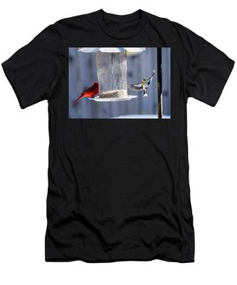 American Goldfinch Inbound Men's T-Shirt (Athletic Fit)