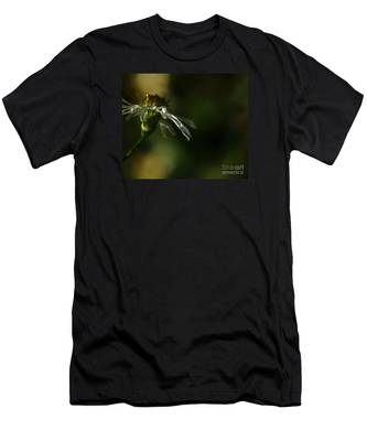 Aster's Peripheral Ray Men's T-Shirt (Athletic Fit)