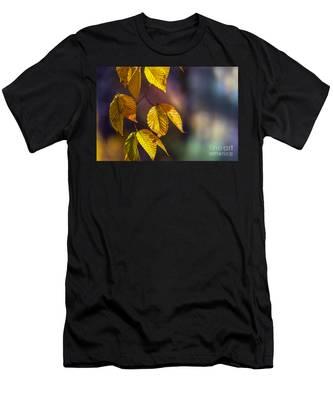 Autumn Sonata Men's T-Shirt (Athletic Fit)