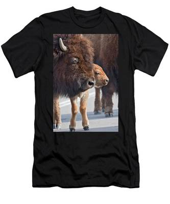 Bison Family Men's T-Shirt (Athletic Fit)