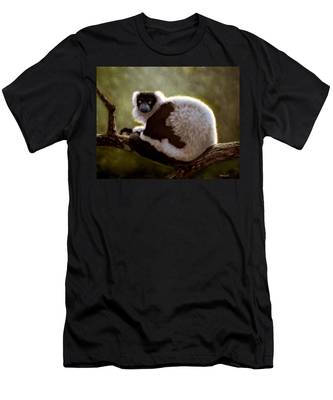 Black And White Ruffed Lemur Men's T-Shirt (Athletic Fit)