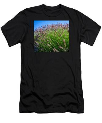 Country Lavender I  Men's T-Shirt (Athletic Fit)