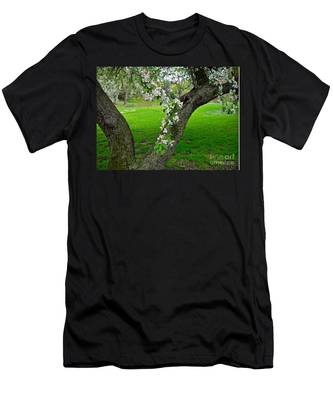 Crabapple Blossoms On A Rainy Spring Day Men's T-Shirt (Athletic Fit)