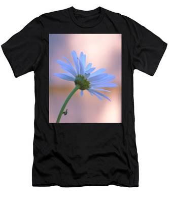 Designs Similar to Daisy At Dawn