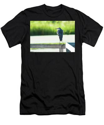 Early Morning Great Blue Heron Men's T-Shirt (Athletic Fit)