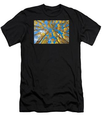 Fall Colored Aspens In The Inner Basin Men's T-Shirt (Athletic Fit)