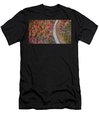Fall Road Men's T-Shirt (Athletic Fit)