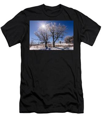Ice Coated Trees Men's T-Shirt (Athletic Fit)