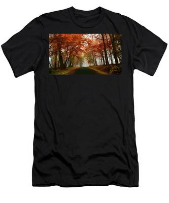 Inner Line Road At Valley Forge Men's T-Shirt (Athletic Fit)