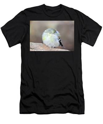 Little Sleeping Goldfinch Men's T-Shirt (Athletic Fit)