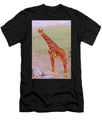 Men's T-Shirt (Athletic Fit) featuring the photograph My Giraffe by Howard Bagley