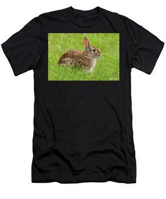 Rabbit In A Grassy Meadow Men's T-Shirt (Athletic Fit)