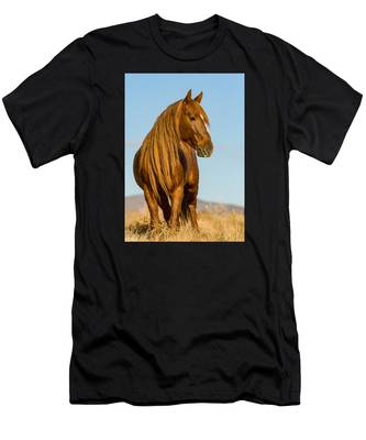 Red Lion Men's T-Shirt (Athletic Fit)