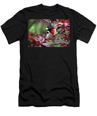 Rose-breasted Grosbeak Men's T-Shirt (Athletic Fit)