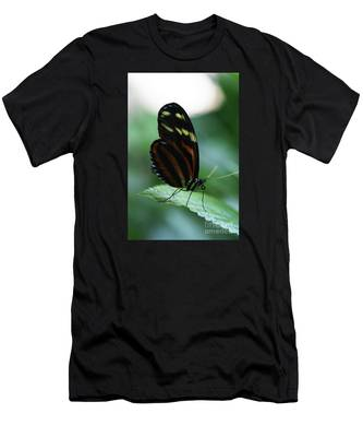 Soft Touch Men's T-Shirt (Athletic Fit)