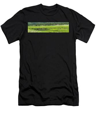 Spring Grazing Men's T-Shirt (Athletic Fit)