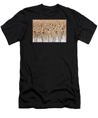 Sunflowers In Snow Men's T-Shirt (Athletic Fit)
