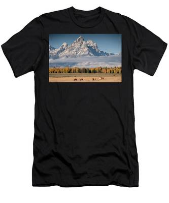 Teton Horses Men's T-Shirt (Athletic Fit)