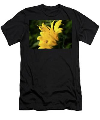 Water Drops And Sunflower Petals Men's T-Shirt (Athletic Fit) by Dennis Dame
