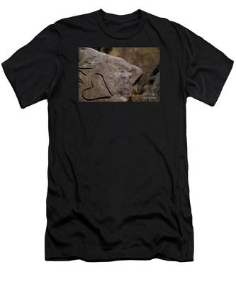 Written In Stone Men's T-Shirt (Athletic Fit)